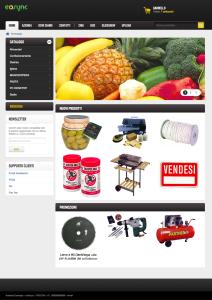 ecsync-gestione-ecommerce
